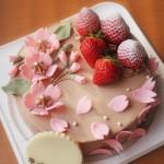SAKURAなケーキ