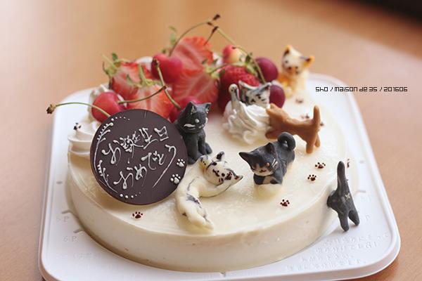 猫 にゃんこケーキ プラチョコ