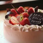 花よりケーキ?